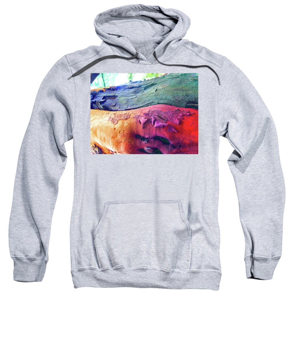 Nature Sweatshirt featuring the digital art Celebration by Richard Laeton