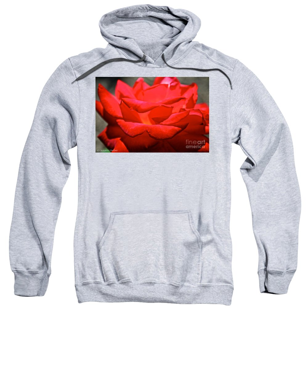 Flower Sweatshirt featuring the photograph Cherry Red Rose by Susan Herber