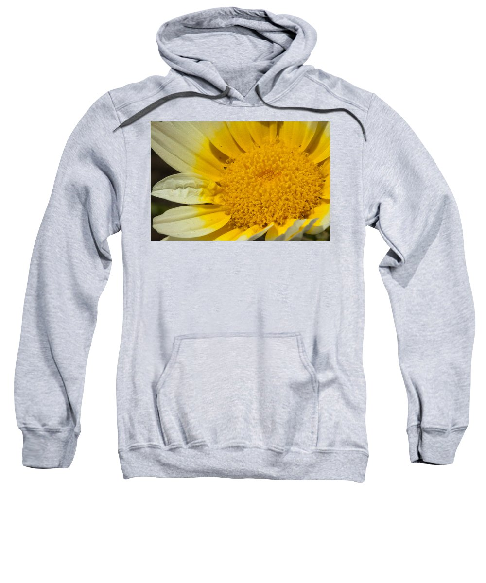 Flower Sweatshirt featuring the photograph Close Up Of The Inside Of A Yellow And White Sun Flower by Ashish Agarwal