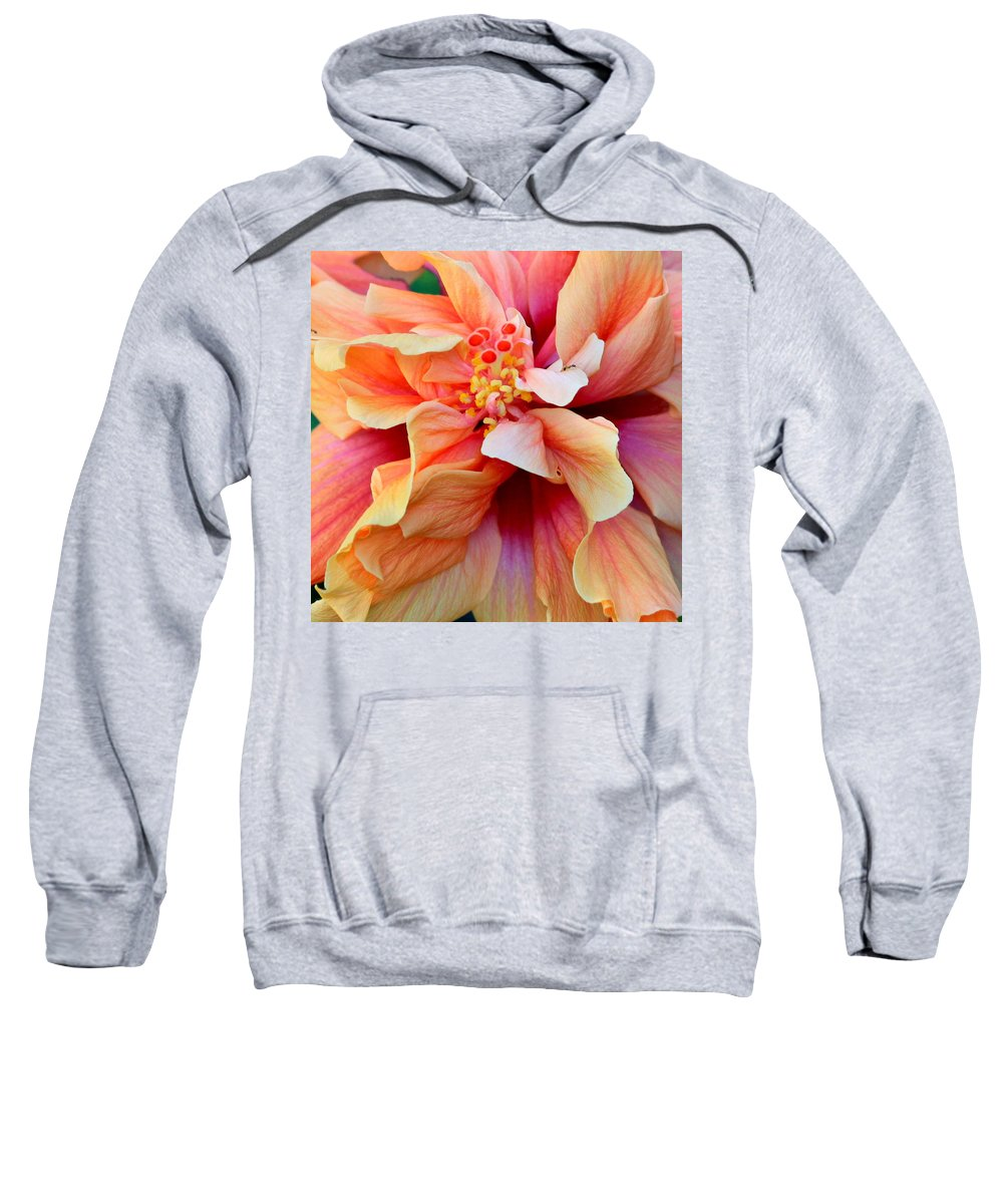 Colors Sweatshirt featuring the photograph Coloring Book Hibiscus by Karon Melillo DeVega