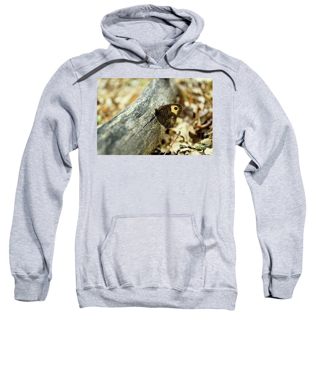Common Sweatshirt featuring the photograph Common Wood-nymph by JD Grimes