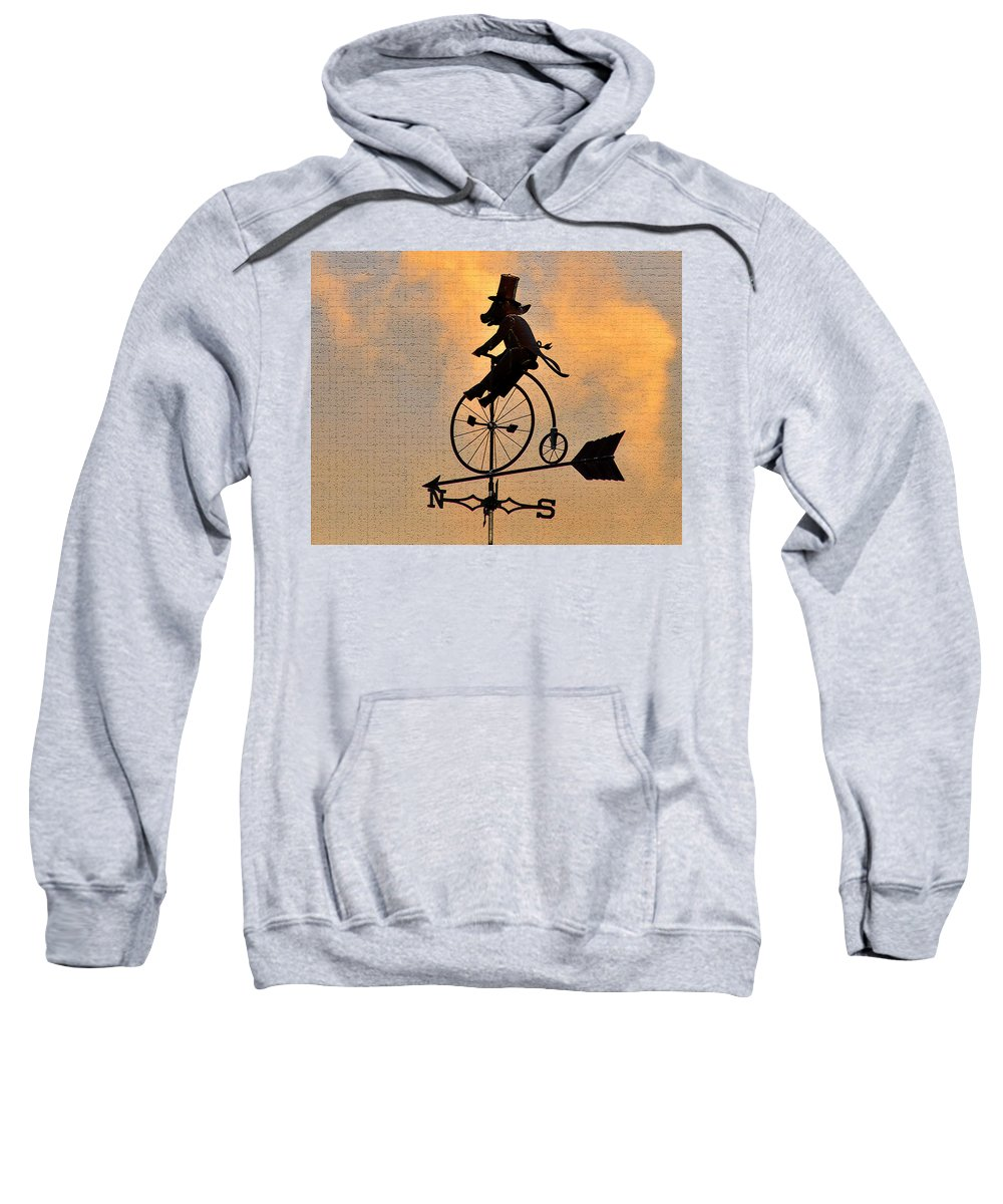 Art Sweatshirt featuring the photograph Cycling Pig by David Lee Thompson