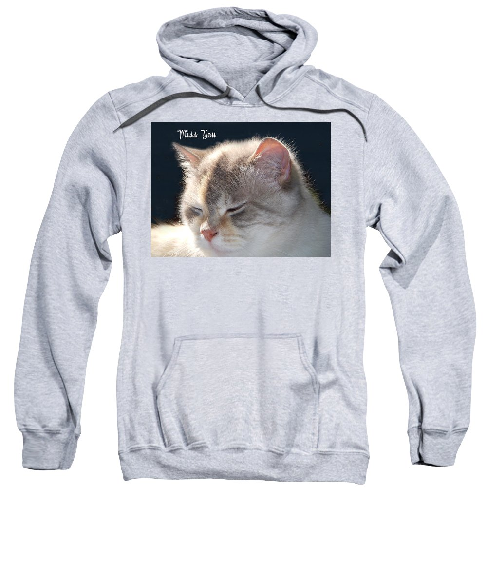 Cat Sweatshirt featuring the photograph Daphne Cat Miss You by Aimee L Maher ALM GALLERY