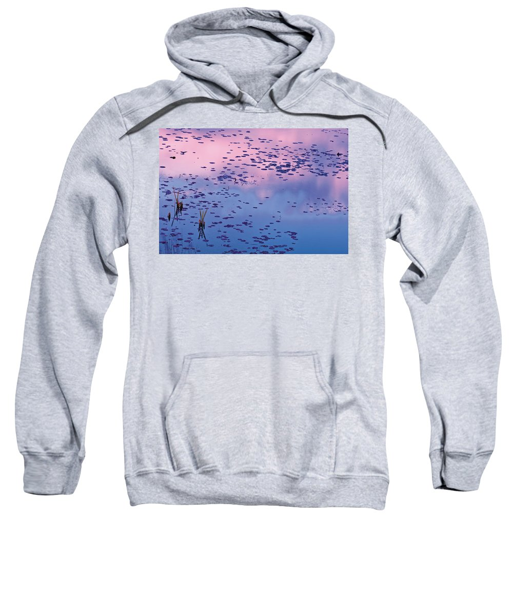 Color Image Sweatshirt featuring the photograph Dawn Sky Reflected In Pool by Mike Grandmailson