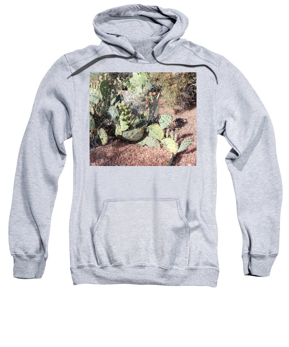 Desert Sweatshirt featuring the photograph Desert's Collection Of Dried Flowers 3 by Kume Bryant