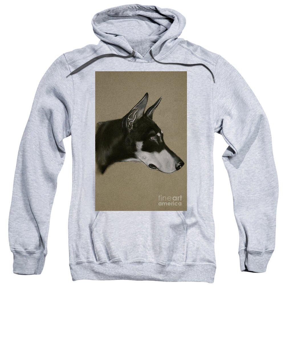 Dobe Sweatshirt featuring the drawing Doberman by Susan Herber