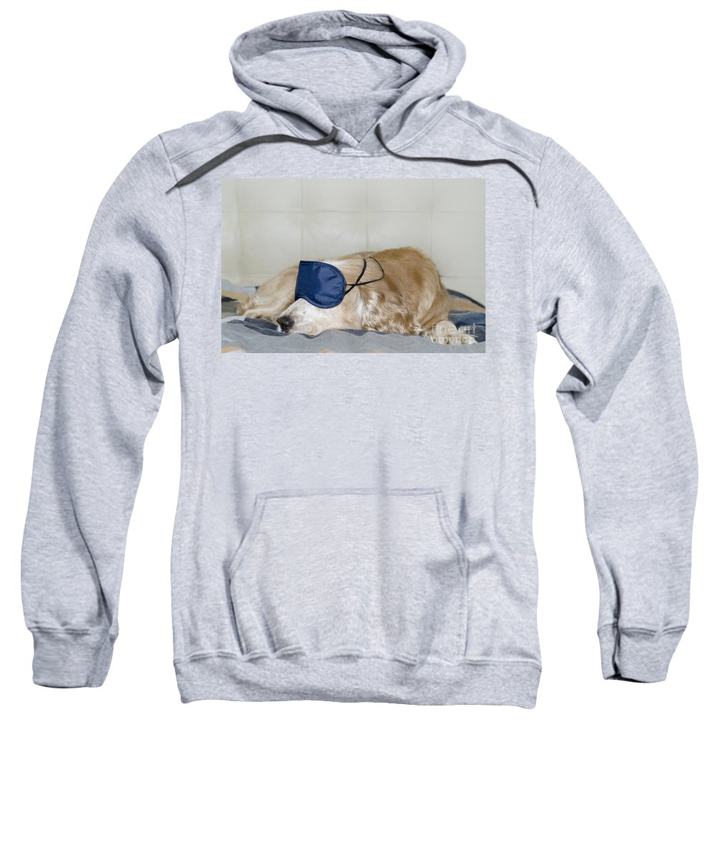 Dog Sweatshirt featuring the photograph Dog Sleeping With A Sleep Mask by Mats Silvan