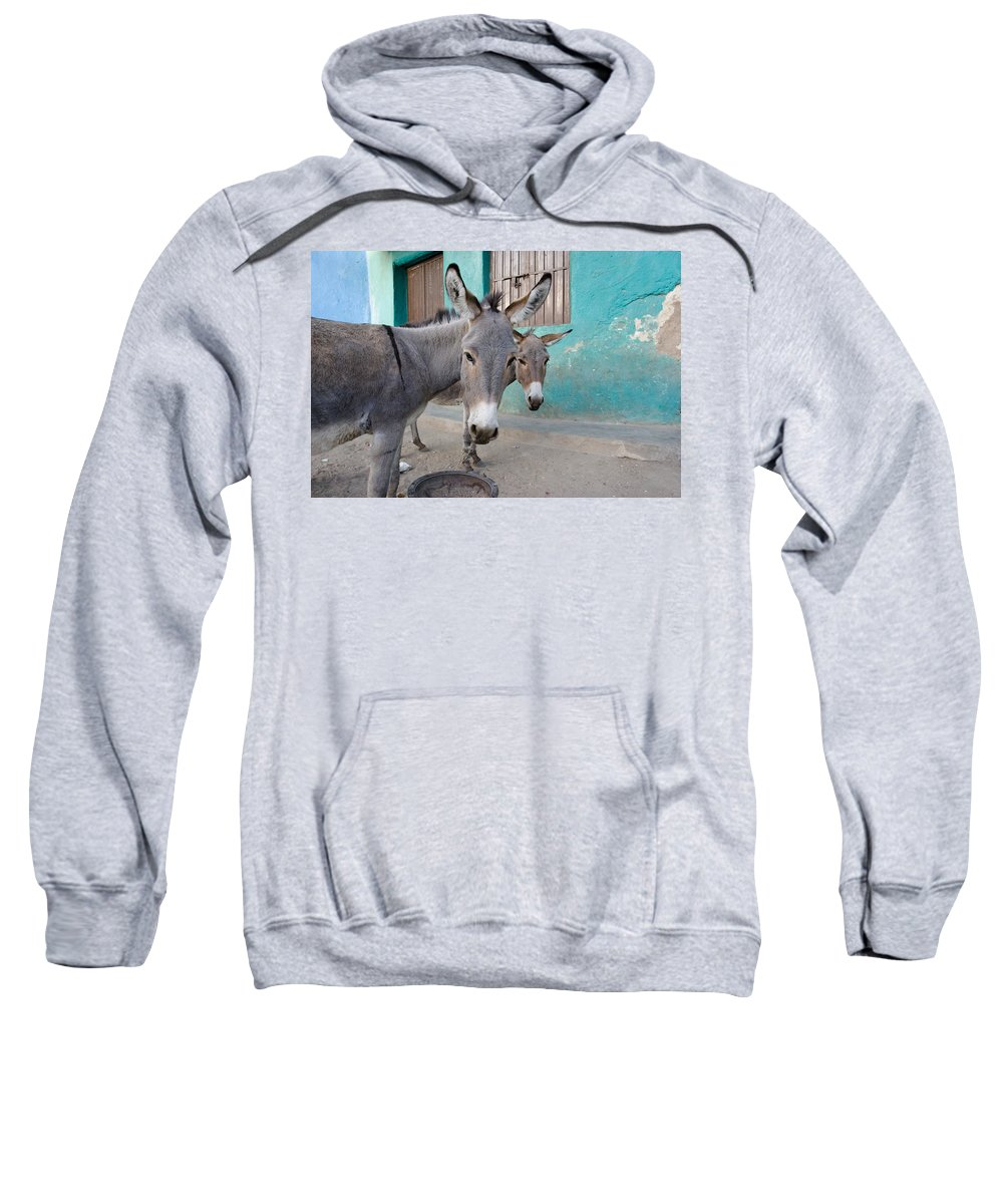 African Sweatshirt featuring the photograph Donkeys, Harar, Ethiopia, Africa by David DuChemin