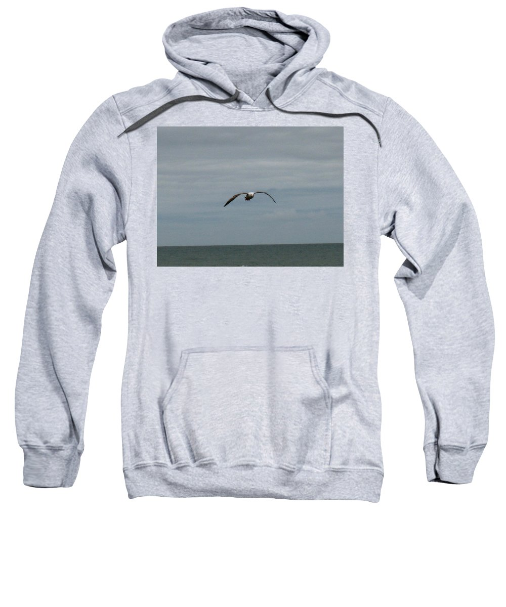 Seagull Sweatshirt featuring the photograph Downstroke by Linda Hutchins
