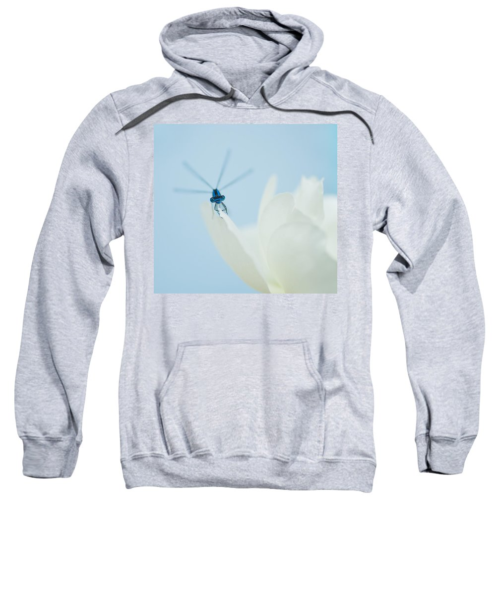 Dragonfly Sweatshirt featuring the photograph Dragonfly by Beth Riser