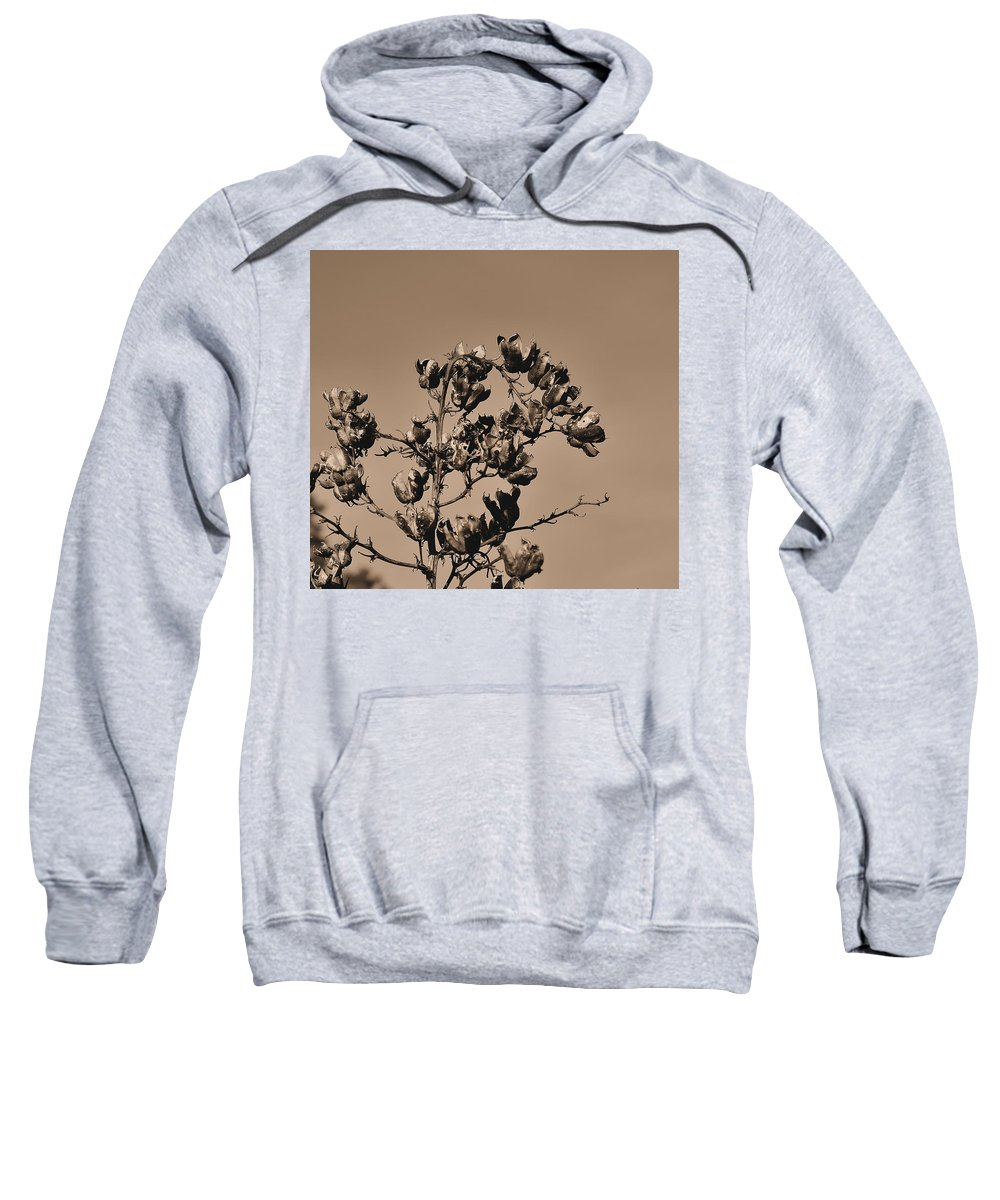 Dried Sweatshirt featuring the photograph Dried Up by Todd Hostetter