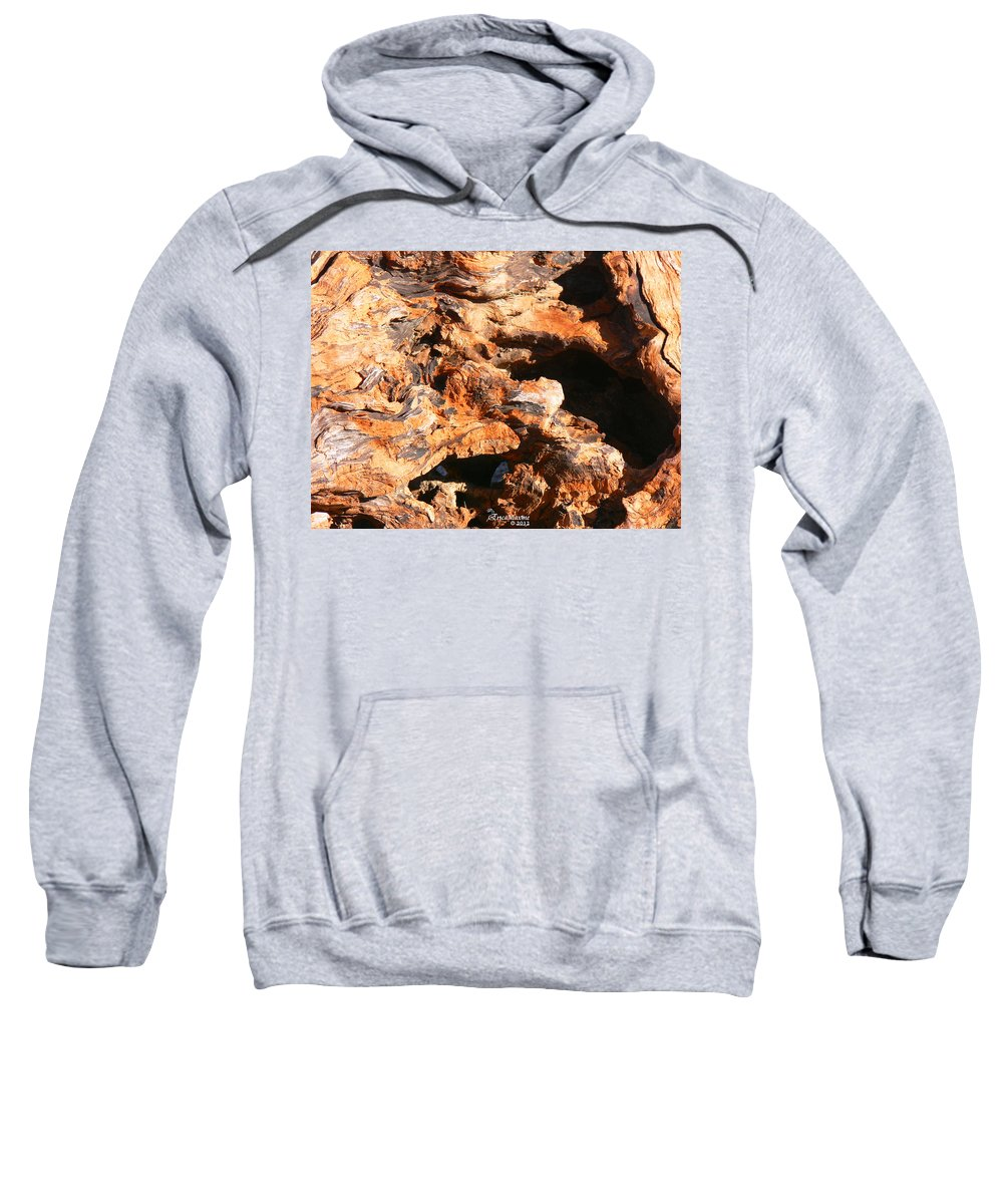 Tn Sweatshirt featuring the photograph Driftwood 2 by Ericamaxine Price