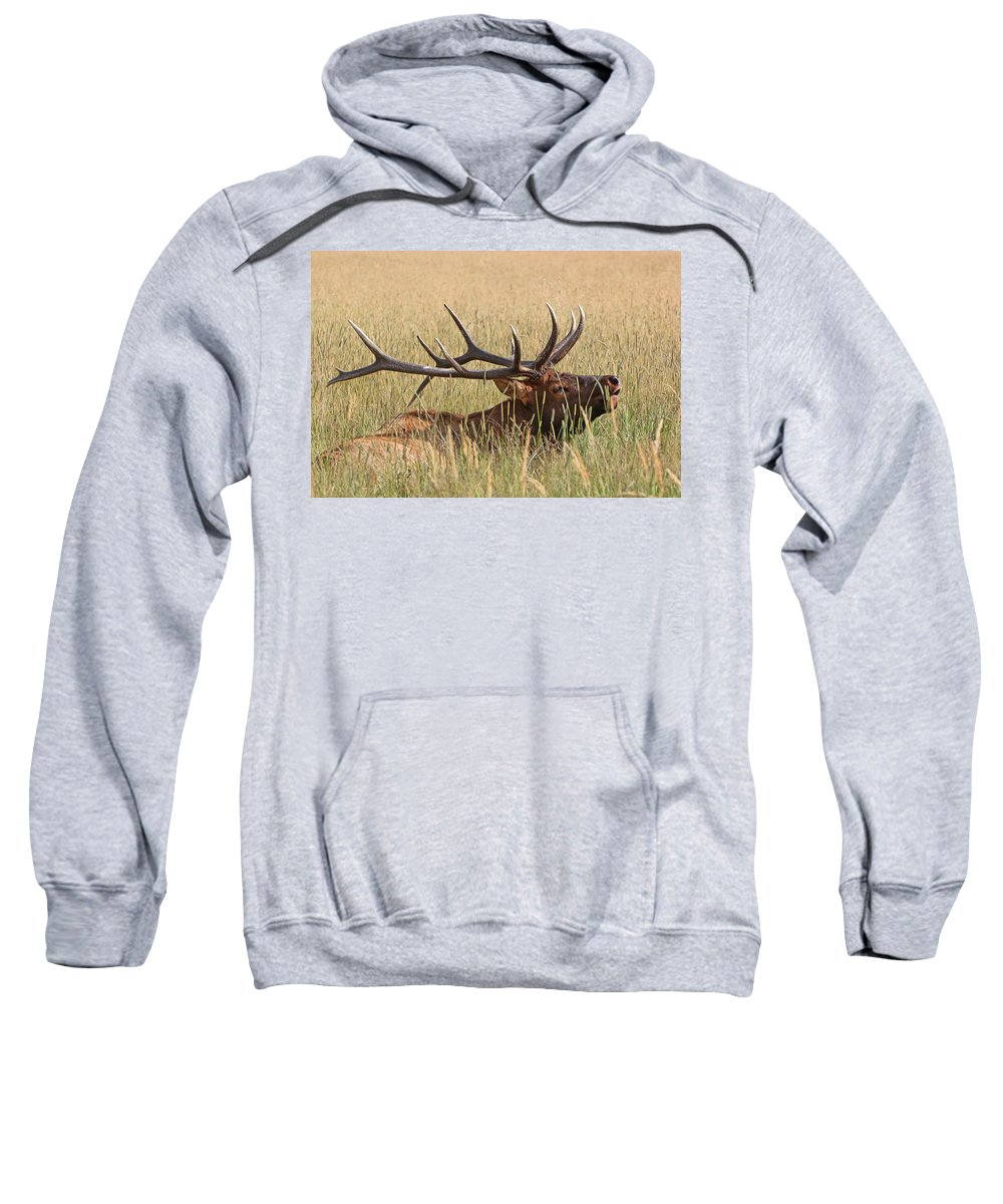 Wildlife Sweatshirt featuring the photograph Elk Bugle by Scott Mahon