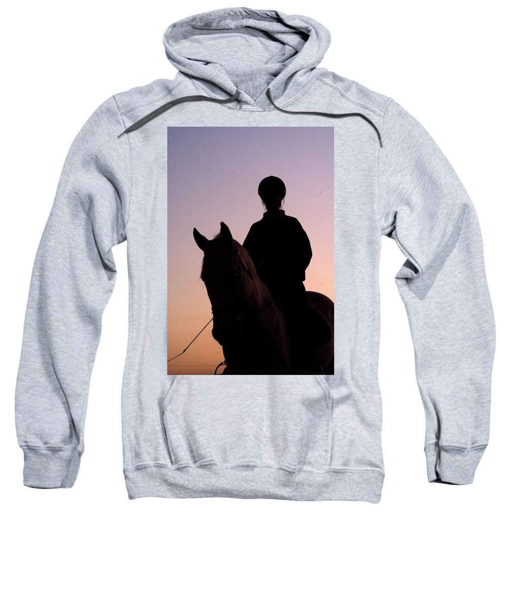 Horse Sweatshirt featuring the photograph Evening Harmony by Tracey Beer