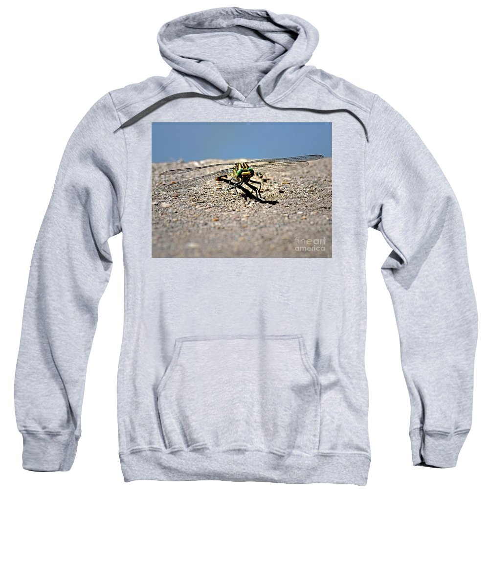 Color Photography Sweatshirt featuring the photograph Eye To Eye With A Dragonfly by Sue Stefanowicz