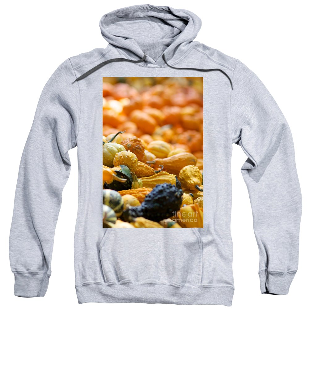 Fall Squash Sweatshirt featuring the photograph Fall Squash Variety by Brooke Roby