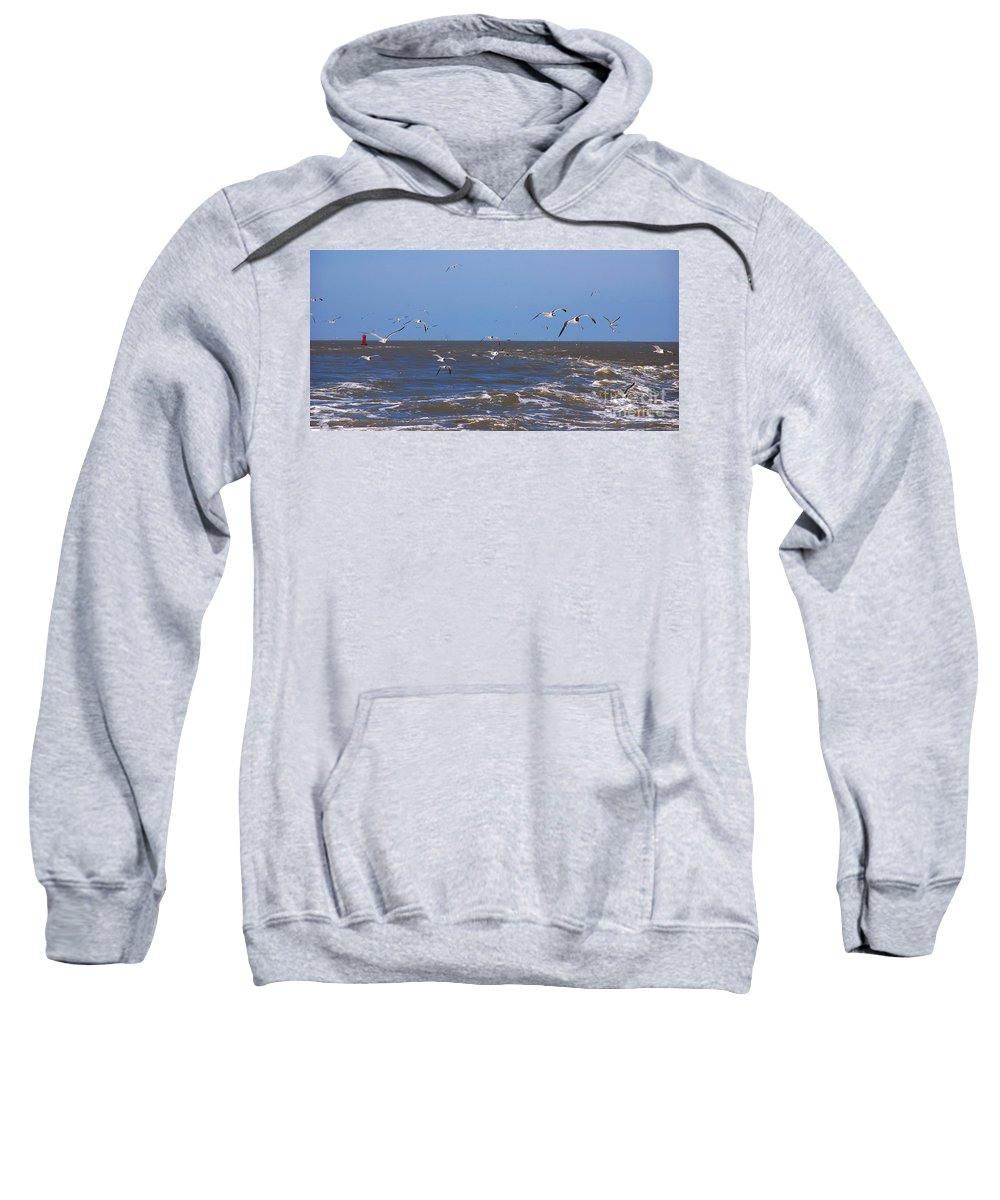 Seagulls Sweatshirt featuring the photograph Feed Us - Ferry To Galveston Tx by Susanne Van Hulst