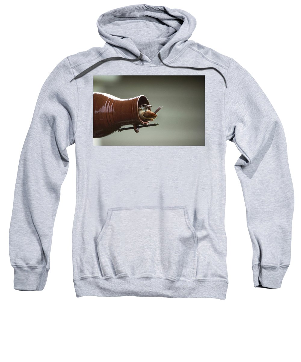 Wren Sweatshirt featuring the photograph Feeding Time by Skip Willits