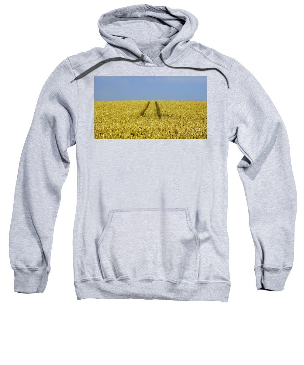 Corn Sweatshirt featuring the photograph Field Of Corn by John Chatterley