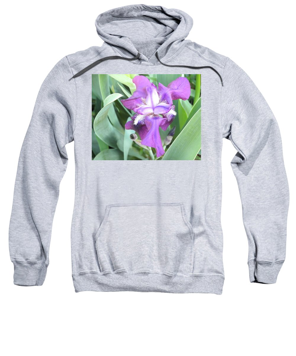 Flower Sweatshirt featuring the photograph First Iris Of The Spring by Wayne Potrafka