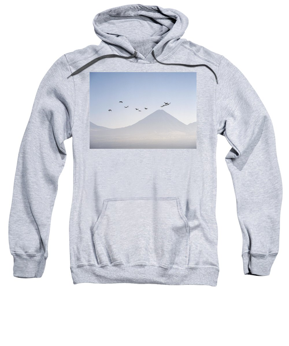South America Sweatshirt featuring the photograph Flamingos Flying Over The Andes by Axiom Photographic