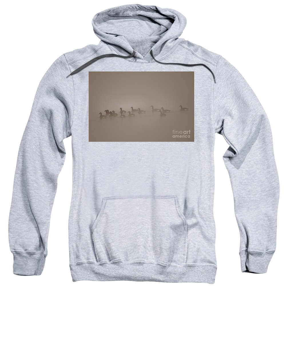 Fog Sweatshirt featuring the photograph Floating In The Fog by Angel Ciesniarska