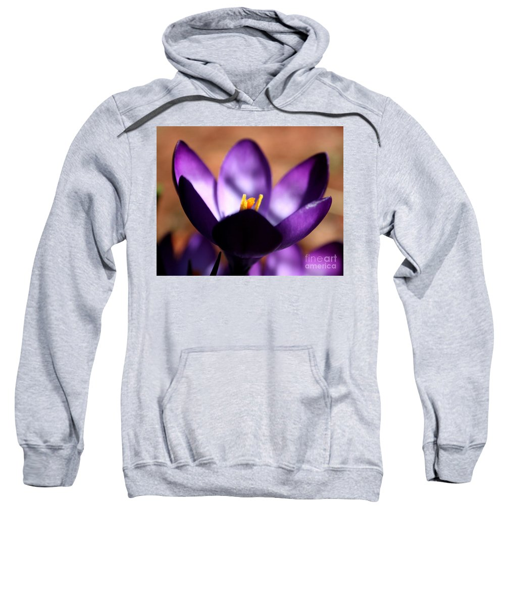 Crocus Sweatshirt featuring the photograph Catching Crocus by Neal Eslinger