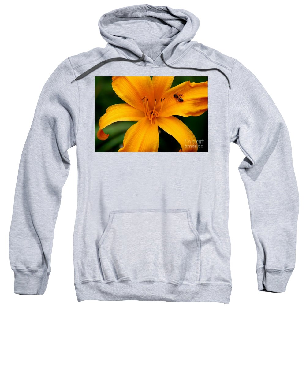 Flower Sweatshirt featuring the photograph Flower And Bee by Ronald Grogan