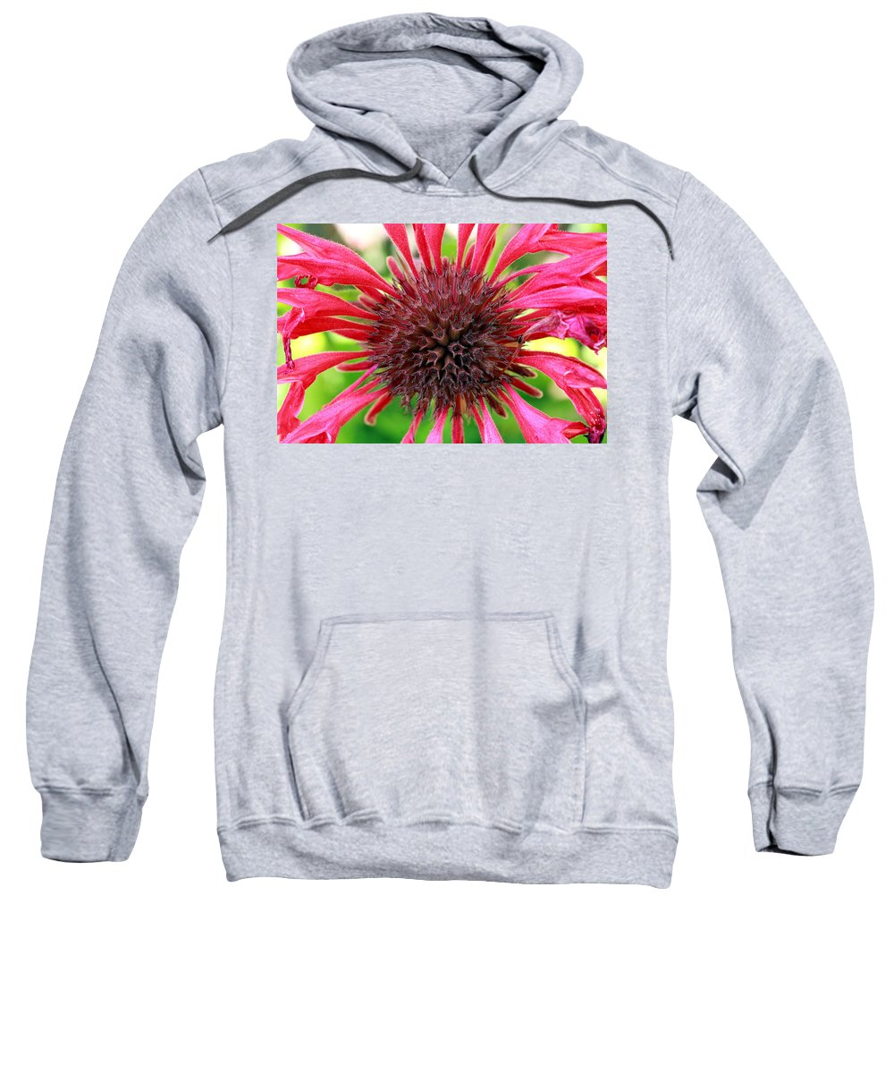 Roses Sweatshirt featuring the photograph Flower Pink by Mark Ashkenazi