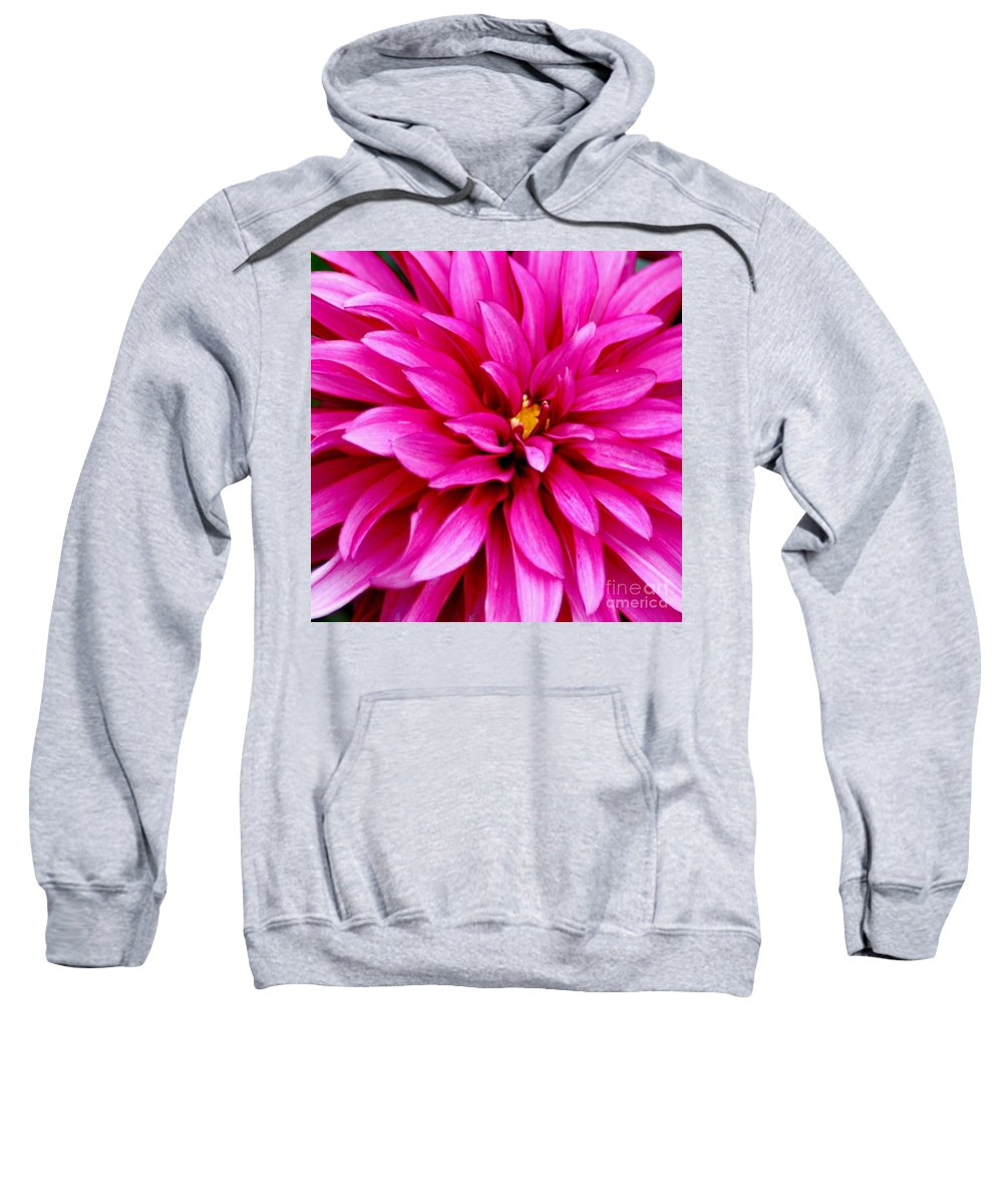 Flower Sweatshirt featuring the photograph Flower Squared by Ronald Grogan