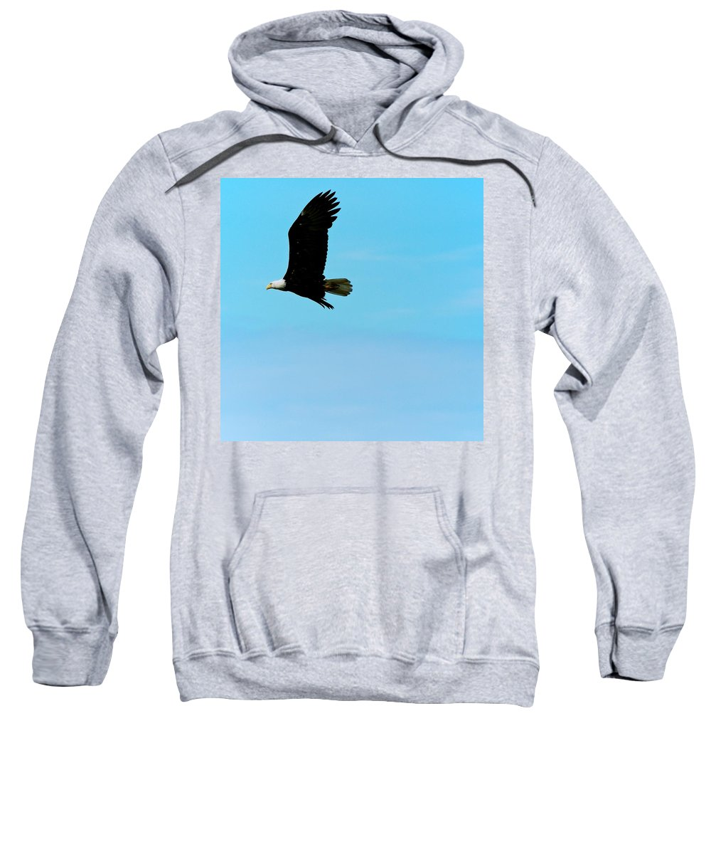 Eagle Sweatshirt featuring the photograph Flying High by Eric Tressler