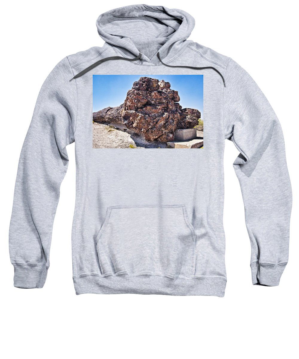 Petrified Forest Sweatshirt featuring the photograph Fossil Tree by Jon Berghoff