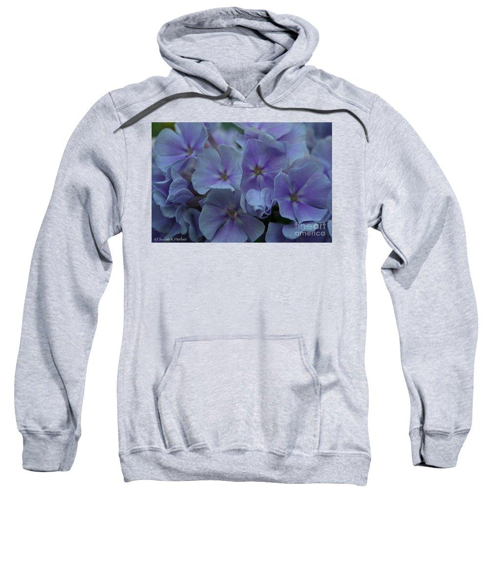 Plant Sweatshirt featuring the photograph Franz Schubert Phlox by Susan Herber
