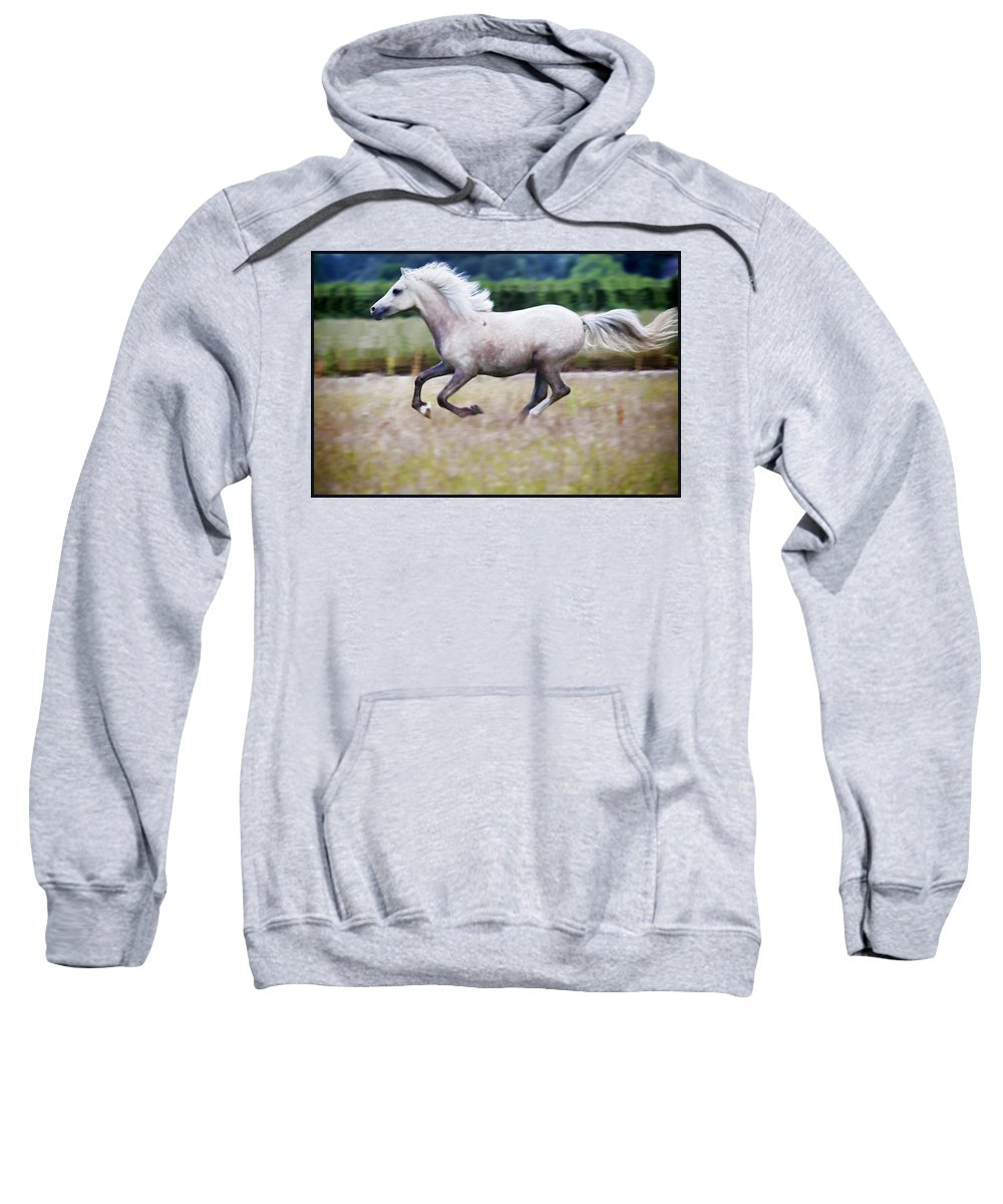 Pony Sweatshirt featuring the photograph Freedom by Karen Ulvestad