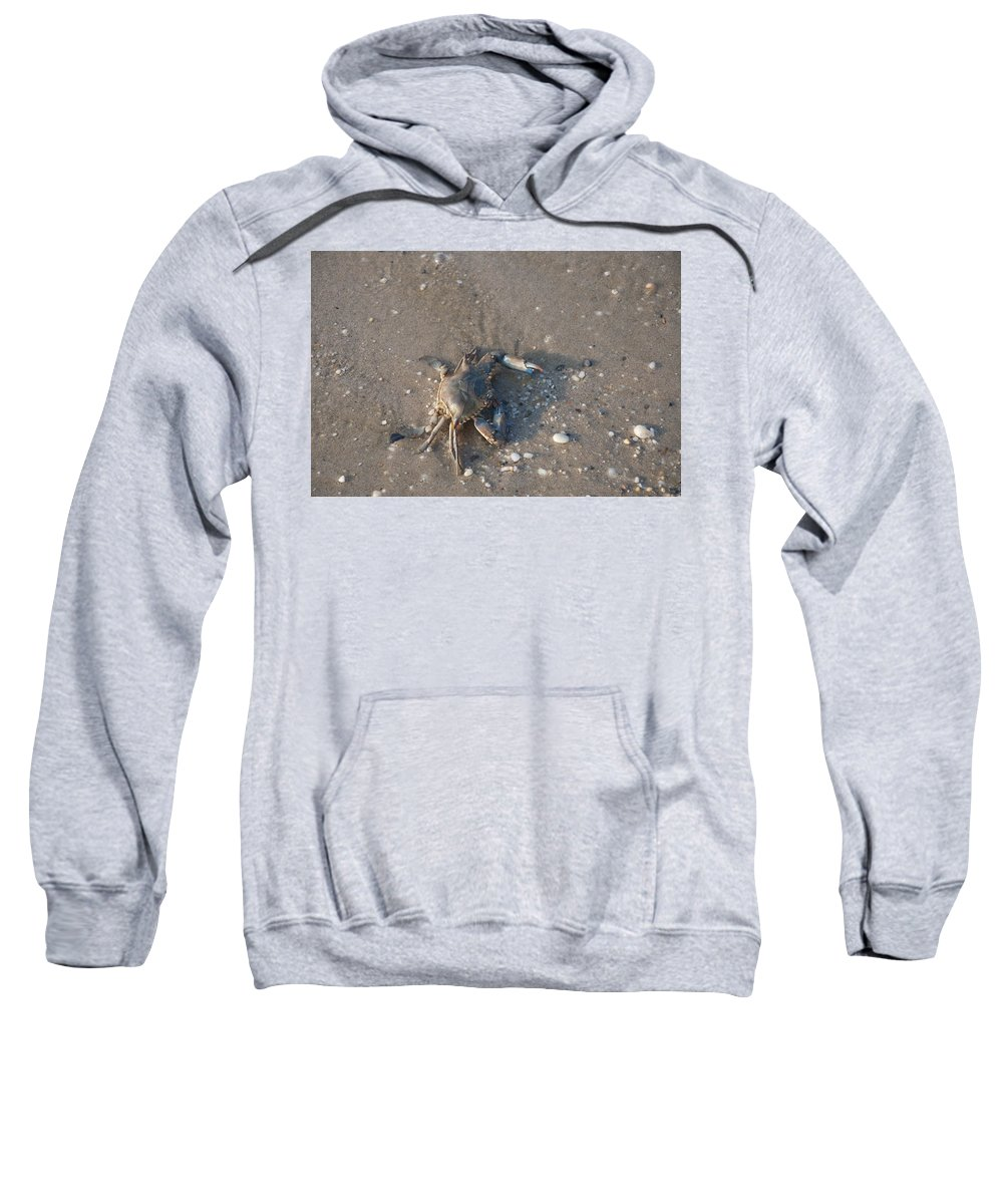 Get Off My Lawn Sweatshirt featuring the photograph Get Off My Lawn by Bill Cannon
