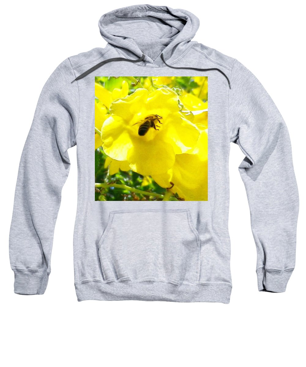 Yellow Bell Flower Sweatshirt featuring the photograph Getting The Goods by Jonathan Barnes