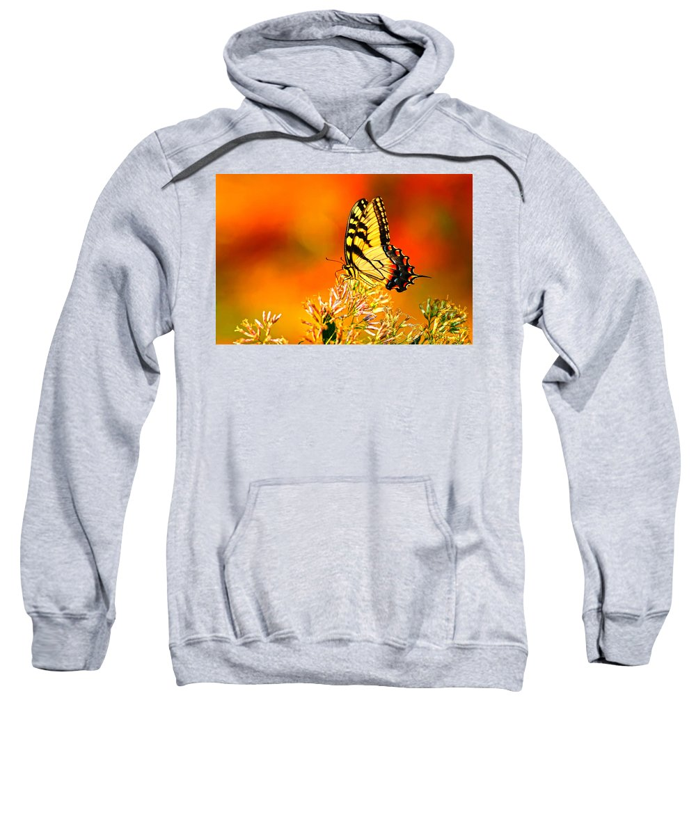 Yellow Swallowtail Sweatshirt featuring the photograph Golden Flying Flower by Randall Branham