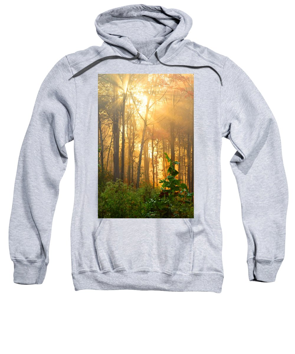 Gold Fog Trees Sweatshirt featuring the photograph Golden Fog Thru The Trees by Randall Branham