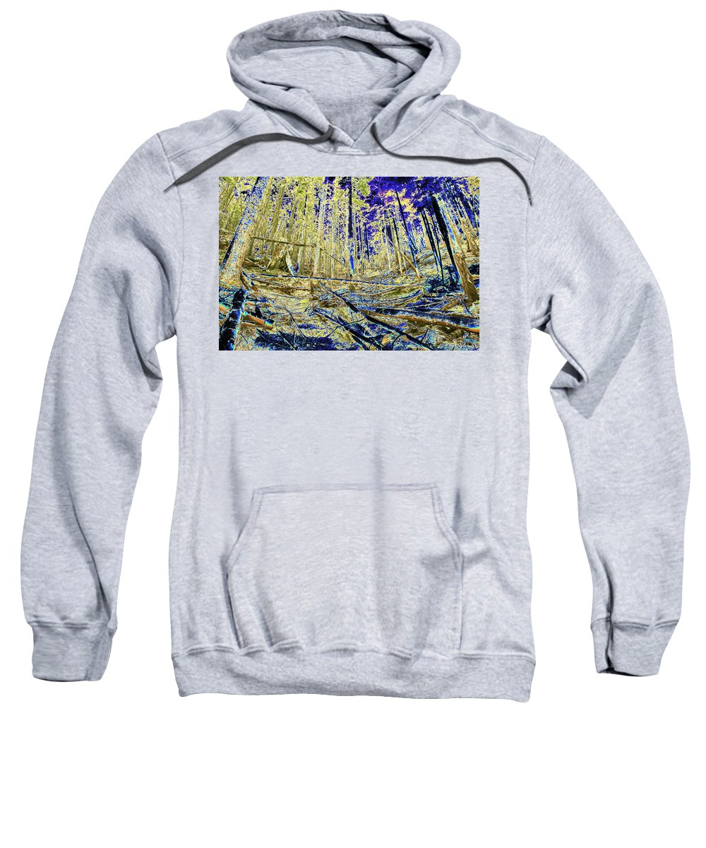 Forest Sweatshirt featuring the photograph Golden Forest by One Rude Dawg Orcutt