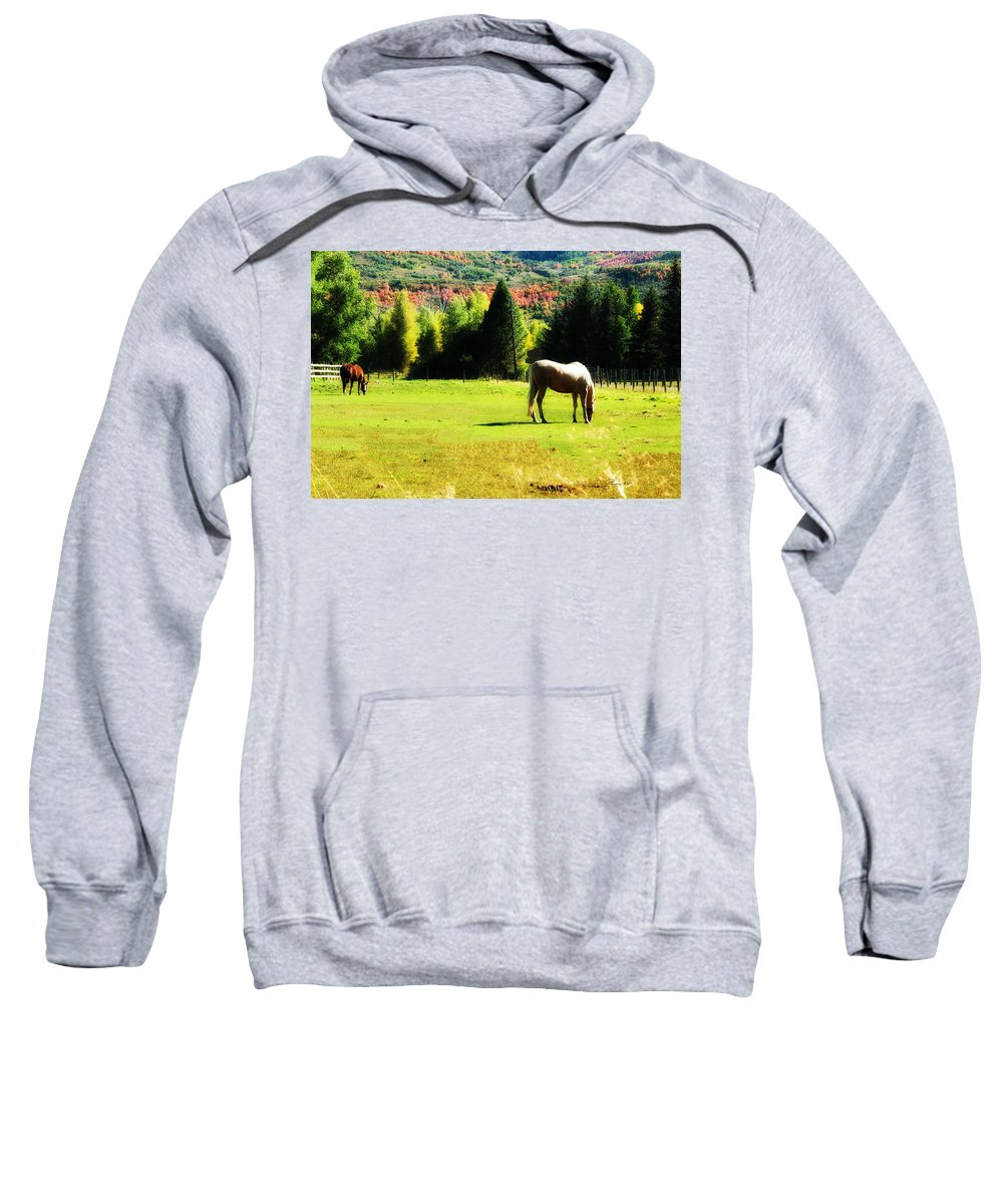 Horse Sweatshirt featuring the photograph Grazing Autumn by La Rae Roberts
