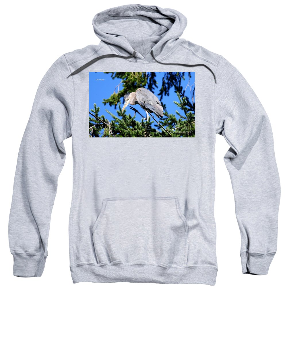 Great Blue Heron Sweatshirt featuring the photograph Great Blue Heron Concentration by Tap On Photo