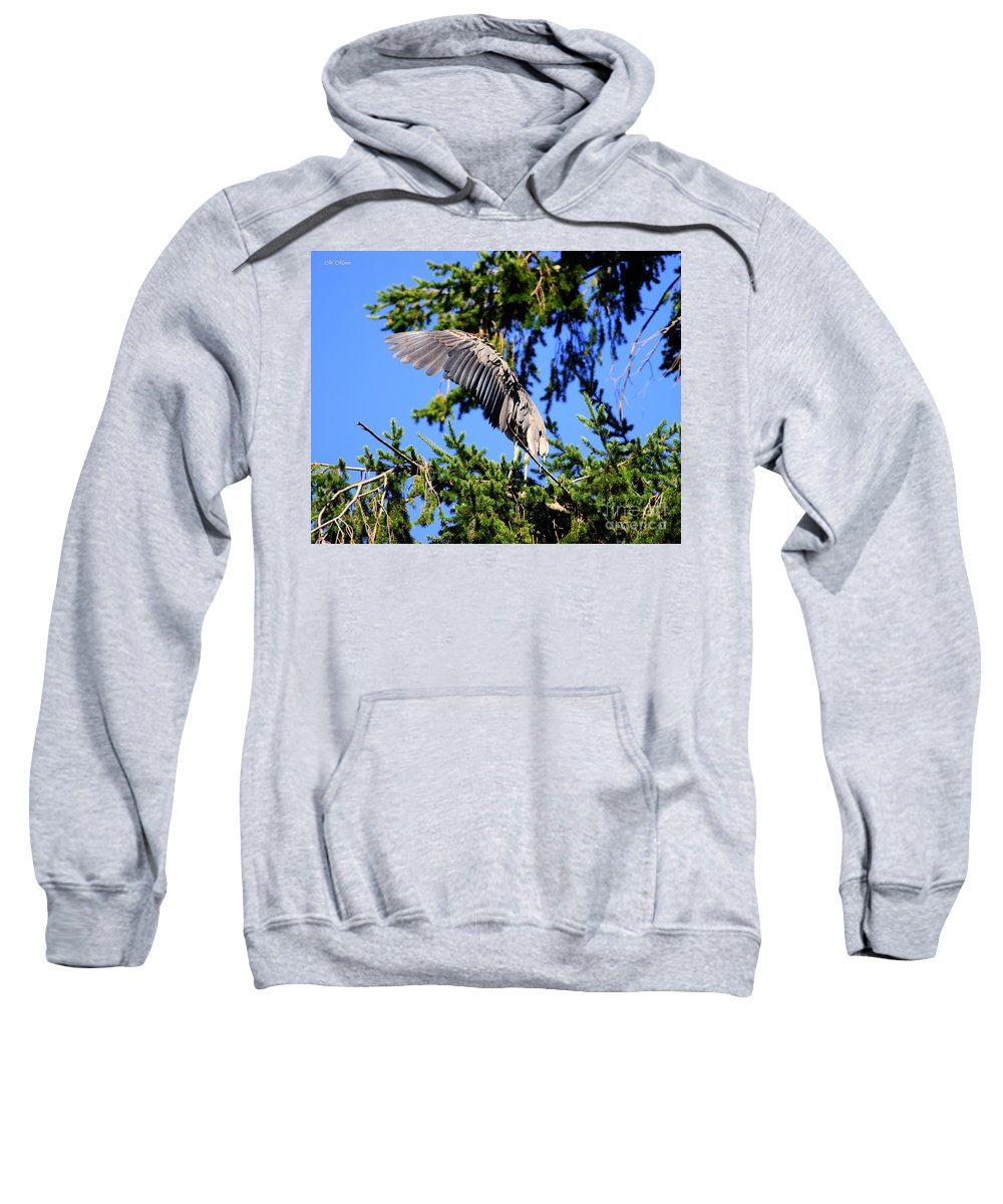 Blue Heron Bird Sweatshirt featuring the photograph Great Blue Heron Cover Up by Tap On Photo