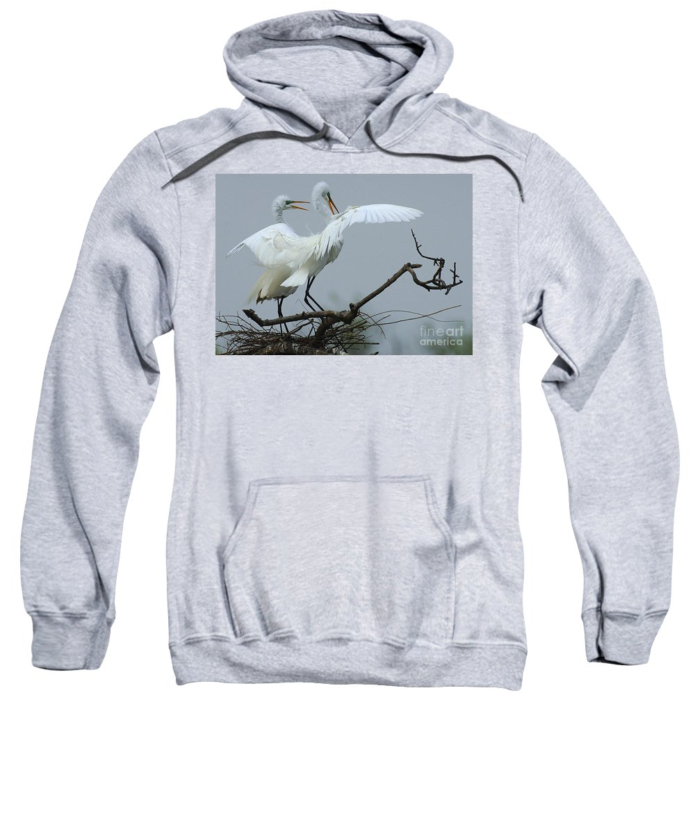 Great Egret Pair Sweatshirt featuring the photograph Great Egret Pair by Bob Christopher