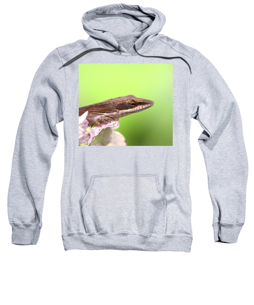 Sweatshirt featuring the photograph Green Anole In Pastels by Travis Truelove
