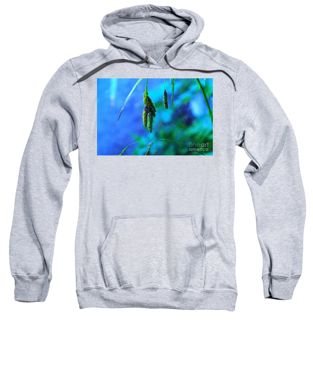 Seeds Sweatshirt featuring the photograph Hanging Green by Jeff Swan