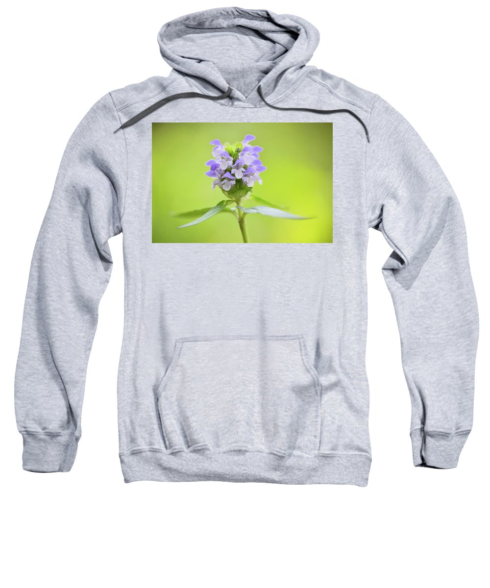 Heal-all Sweatshirt featuring the photograph Heal-all by JD Grimes
