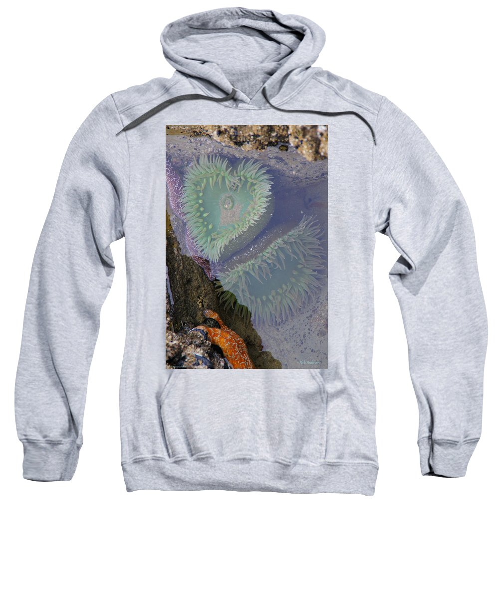 Heart Sweatshirt featuring the photograph Heart Of The Tide Pool by Mick Anderson