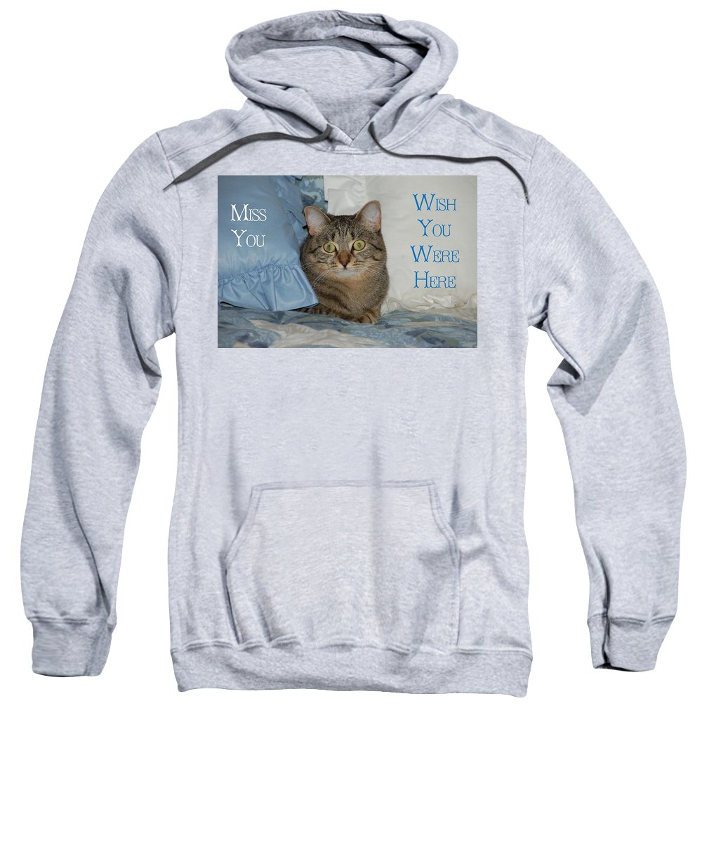 Cat Sweatshirt featuring the photograph Heidi Cat Miss You by Aimee L Maher ALM GALLERY