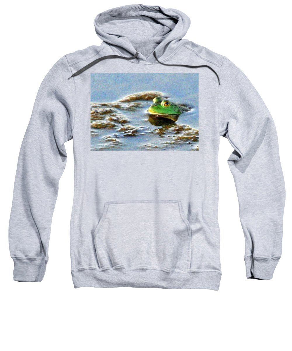 American Bullfrog Sweatshirt featuring the photograph Here's Looking At You by Laurel Talabere