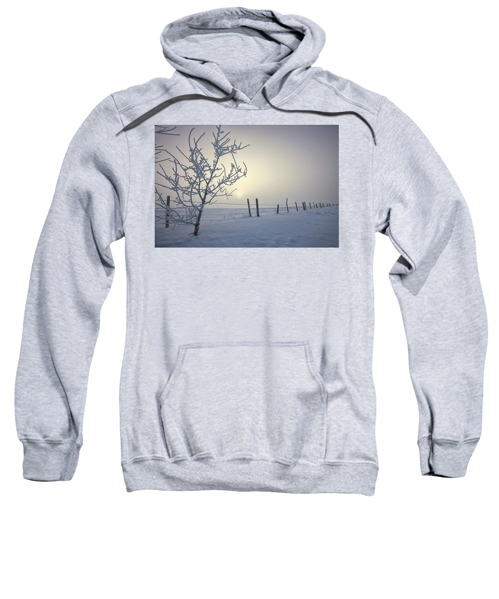 Barbed Wire Fence Sweatshirt featuring the photograph Hoar Frost Covering Trees And Barbed by Dan Jurak